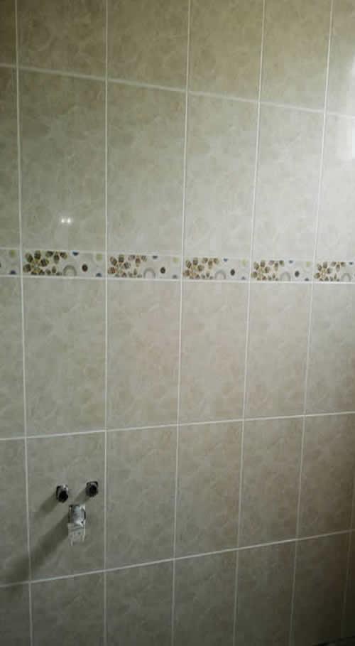 屏東公寓浴室裝修-浴室裝修